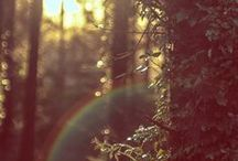 Nature ♣
