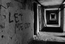 Asylum:Psychiatric Hospital for the mentally ill / . Beauty through the eyes of a derelict mind .