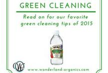Green Cleaning / DIY cleaning recipes for a safe home