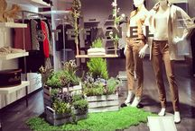 SPRING / Spring Windows project