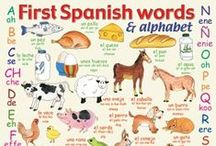 Homeschool spanish / spanish first words