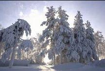 Зимние виды природы / Про зиму