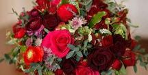 Red Posies