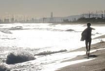 El nostre poble · This is our town / Vilassar de Mar, un poble i una manera de viure.
