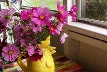 FLOWERS AND ARRANGEMENTS / by Vicki Van Tassel