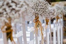 Weddings! Babies breath...!