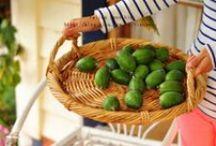 Feijoa / Vendita Online Piante di #Feijoa in vaso - Sale Online #Feijoa Trees in pot.