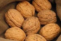 Noce - Walnut / Vendita Online Piante di Noce Comune in vaso - Sale Online Commun Walnut Trees in pot.