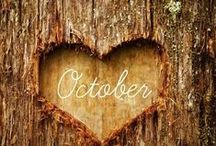 my favorite month's