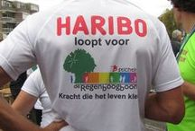 Singelloop 2014 Breda / Haribo rent de Singelloop in Breda voor het goede doel: De Regenboogboom