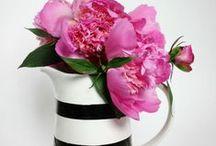 black white pink