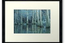BeautyScapes / Waterscapes and Reflections in different color's. / by Kay Harrington Prints
