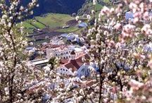 Mi Paraíso <3 Gran Canaria / My paradise # Mitt paradis