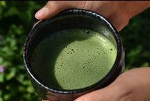 Matcha Information - Education / Information and education on matcha: it's history, production and future