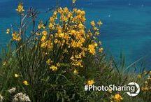 Photo Sharing / I nostri scatti più belli condivisi con voi. Condividete anche i vostri #PhotoSharing #DiTieri ;)