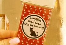 Cat lovers!
