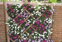Blomster-stativ/-kasser/ Flowerstand