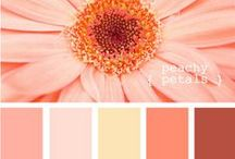 Color Combos I Love / Beautiful color palettes for inspiration in design and life.