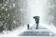 WINTER, SNOW, COLD    / Photography. Images.