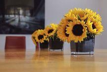 MCQUEENS FLOWERS / London florist.