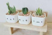 Lovely Pots