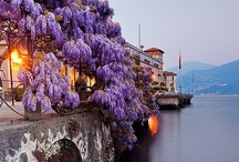 I'd love to see in Italy...