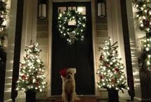 Christmas / by Amy Allgeier