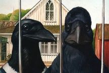 Crows & Ravens / Crow love with a side of ravens.
