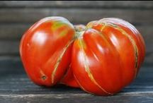 I Heart Tomatoes / My ode to the love apple.  How I love thee.
