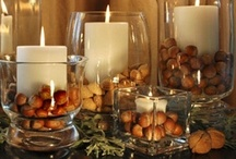 Thanksgiving / by Laura Giannone