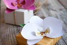 Business cards, gift paper, bows  / How the package for your customer should look