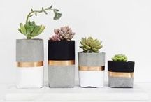 // CONCRETE PLANTER