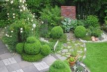 Broceliandes Gartenträume