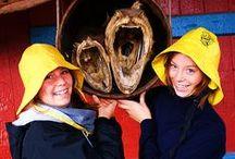 Norway ~ Норвегия / Что посмотреть в Норвегии? Всё самое интересное о Норвегии и Лофотенских островах: рыбалка, маршруты, природа, гастрономия, круизы. What to see in Norway? All the fun of Norway and the Lofoten fishing, trails, nature, gastronomy, cruises