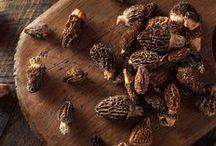 ► Champignons / Retrouvez la gamme de champignons sauvages Sabarot