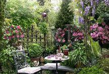 Beautiful Gardens / Beautiful gardens