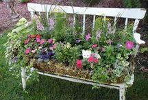 Unusual Garden Ideas / Unusual projects for the garden