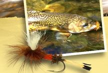 Trout Fishing Flies / A glorious collection of trout fishing flies. Perfect for fly fishing in the Goobarragandra River when you visit us at Elm Cottages - Tumut.  www.elmcottages.com.au