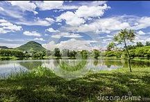 Beautiful Landscapes of Assam