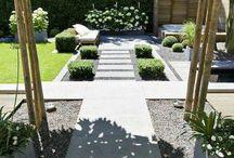 tuin / Planten en tuin