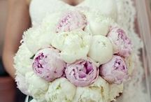 Perfect Princess Wedding