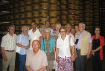 Parma e Parmigiano - luglio 2013