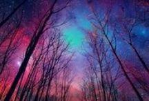 Beautiful nature / Beautiful nature pictures