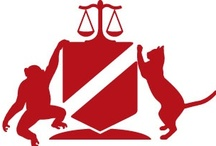 ALDF / Protecting the lives and advancing the interests of animals through the legal system. (My legal reps)