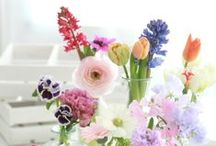 Flowers & Gardens / Ideas, inspiration & more for my future garden. / by Vivian Duran