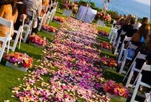 Laguna Beach Weddings / There is no better locale than Laguna Beach to celebrate your special day! Get inspiration here for your perfect Laguna Beach wedding or event!