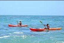 Things To Do in Laguna Beach / Never a dull moment in Laguna Beach!