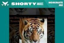 Shorty Awards 2014 / Nominate & help raise awareness for captive tigers!