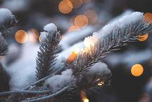 Winter & Xmas ♡