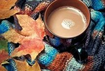 Fall / The season I love the most. <3